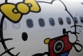 A passenger looks out of an Airbus A330-300 aircraft of Taiwan's Eva Airlines, decorated with Hello Kitty motifs, in Taoyuan International Airport, northern Taiwan, April 30, 2012. REUTERS/Pichi Chuang