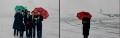 1999年1月11日清晨5时左右,一场满天飞舞的大雪将巫家坝机场点缀的银装素裹,厚厚的积雪盖住了昆明机场停机坪和飞机