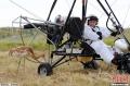 普京亲自驾驶滑翔机 引导鹤群踏上迁徙之路