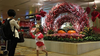 Chinese New Year installations in Changi Airport's Terminal 1 on Feb 7, 2013. A team of 10 horticulturists manage 150 gardeners and are constantly looking for ways to keep the airport plants looking fresh and vibrant. -- ST PHOTO: Kevin Lim