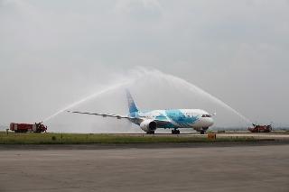 6月2日上午10:31南航订购的中国首架波音787飞抵广州白云机场。图为飞机接受水门仪式。 (摄影:白云机场谢佳佳)