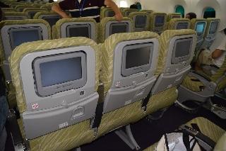 南航波音787采用经典的三舱布局,共有228个座位,其中头等舱4个,公务舱图片