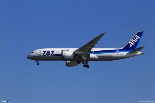 全日空机队规模将达305架 35%用于国际航线