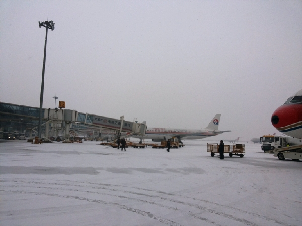 内蒙古空港地服公司货运部完成春运保障任务