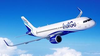 [案例]廉价航空典范IndiGo,用服务打动顾客