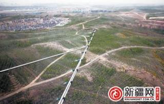 乌鲁木齐市飞防首用直升机 单趟喷药面积800亩