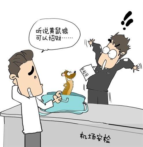动物频频闯关被拿下   9月1日,机场安检b区,安检员小王在对旅客行李