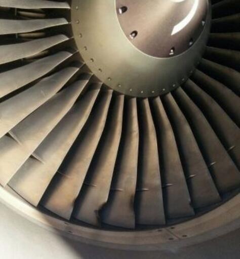 伏林航空客机遭鸟击后中断起飞 发动机扇叶损坏