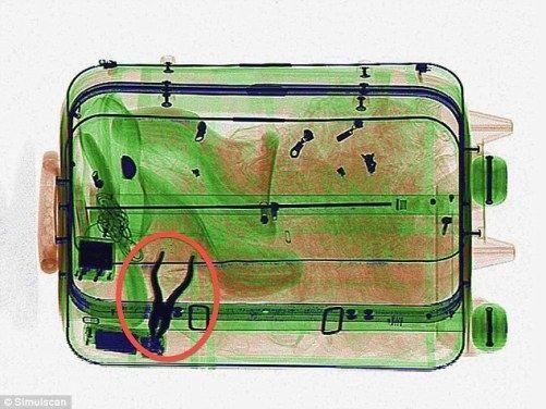 安检人员是如何发现行李箱中的违禁品的?