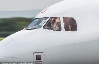 对于飞机摄影师而言,最珍贵的时刻无疑是驾驶飞机的机长和副驾驶对自己挥手作为回应。