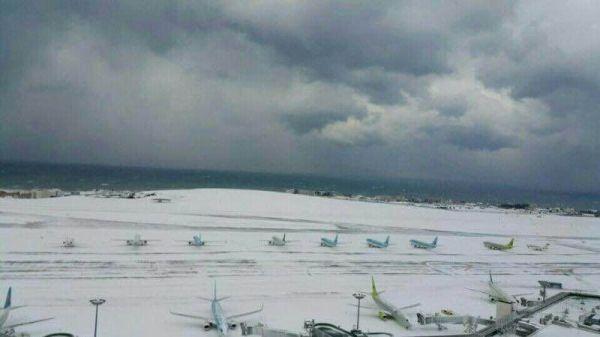 韩济州岛遭32年不遇暴雪 机场暂停全部航班起降