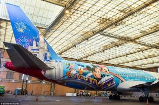 On the aircraft tail, the vibrant livery sports an icon from Walt Disney World, Cinderella's Castle, the main brand of the complex and the Magic Kingdom Park icon.