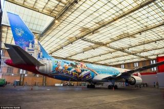 To wrap the plane, it took 536 adhesive plates, totalling over 9,000 square feet of prints, applied carefully over 10 days, with eight hours a day of intense work.