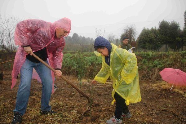 ssamc人雨中义务植树为环保添绿