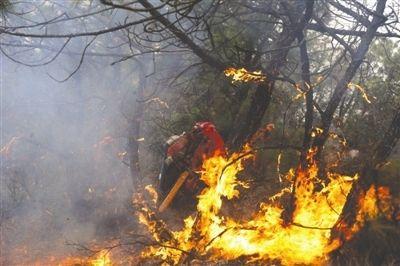 凉山村民上坟烧纸引森林火灾 直升机出动救火