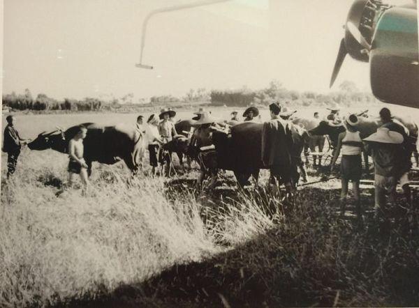 10头水牛拖8吨飞机 80年前汉莎飞行员航拍中国