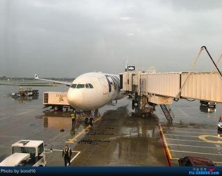 bond 16从美国代顿飞到芝加哥,在机场拍到芬兰航空彩绘版的333,上面有两朵大花