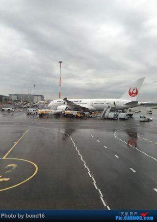 飞机降落,看见一只日航的787