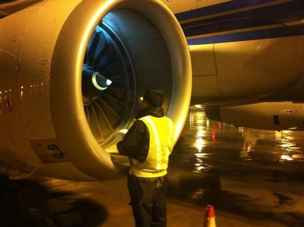警惕!如果猫钻进了飞机轮舱