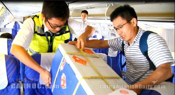 民航局发布《人体捐献器官航空运输管理办法》