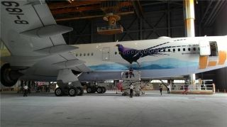 """Mikado Pheasant"" decals are being applied to China Airlines' first A350, B-18901. Photo by Facebook Page Talkairlines"