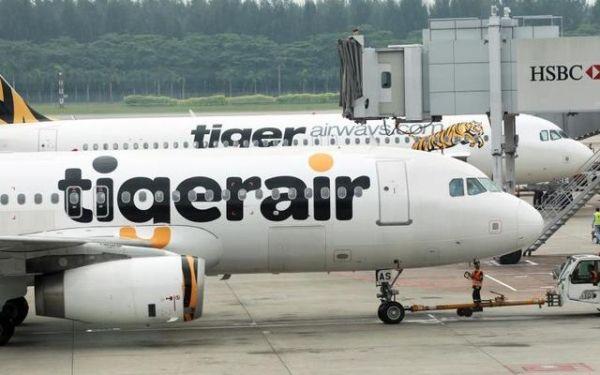 虎航载客率低问题多 台立委:不赚钱干脆收掉