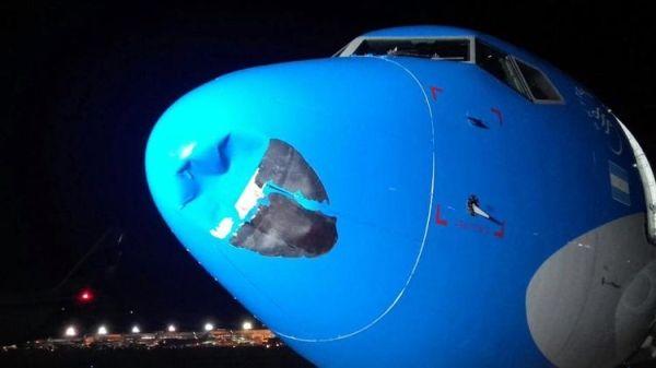 阿根廷客机进近时遭遇鸟击 机头凹陷