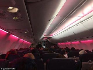 反特朗普游行点燃 美西南客舱亮粉红灯光声援
