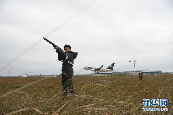 """""""85后""""畲族驱鸟员:守护航班起降安全"""