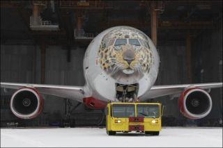 """俄罗斯国家航空公司""""阿穆尔豹""""彩绘涂装的777-300飞机"""