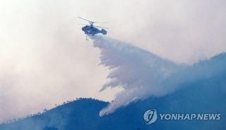 韩国江陵市发生森林火灾 消防员启用直升机灭火
