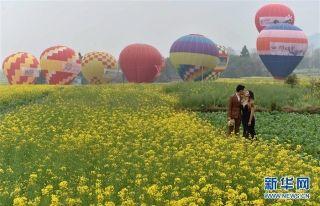情定花海 中缅16对新人体验热气球婚礼
