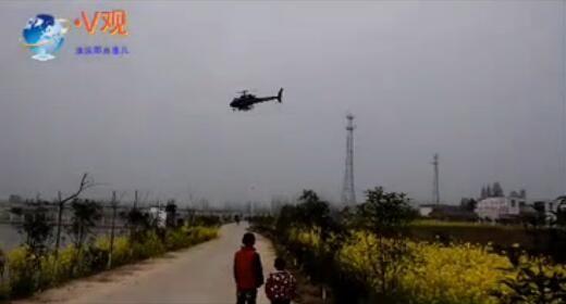 淮滨动用200架无人机、8架直升机防治条锈病