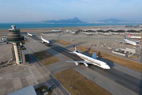美媒:香港机场增建跑道 或影响中华白海豚生存