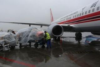 货运装卸员将货物和行李用塑料布进行遮盖。周雨摄