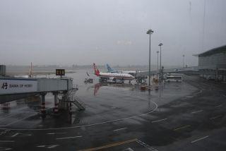 雨中的石家庄机场。周雨摄