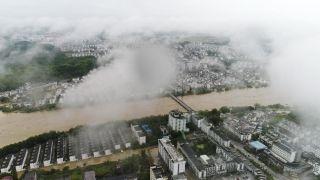 该次强降雨最高降雨量315毫米,河水普涨超过4米。