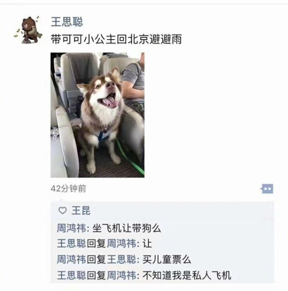 王思聪带爱犬坐私人飞机 一句话扎心周鸿祎