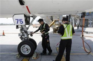 一丝不苟检查中的飞机维修师。