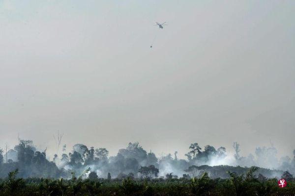印尼五省因林火进入紧急状态 18架直升机灭火