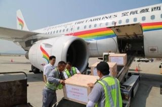江苏支援西藏的10万毫升血液运抵拉萨
