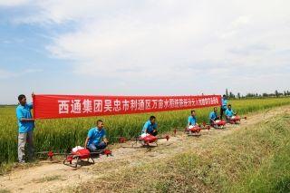 西通植保无人机赴吴忠完成1万亩稻田飞防作业
