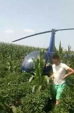 视频|一架直升机迫降河南濮阳辣椒地!无人受伤
