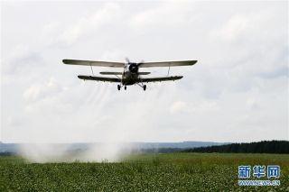 8月15日,飞机在黑龙江省黑河市五大连池农场为大田作物喷施营养液。