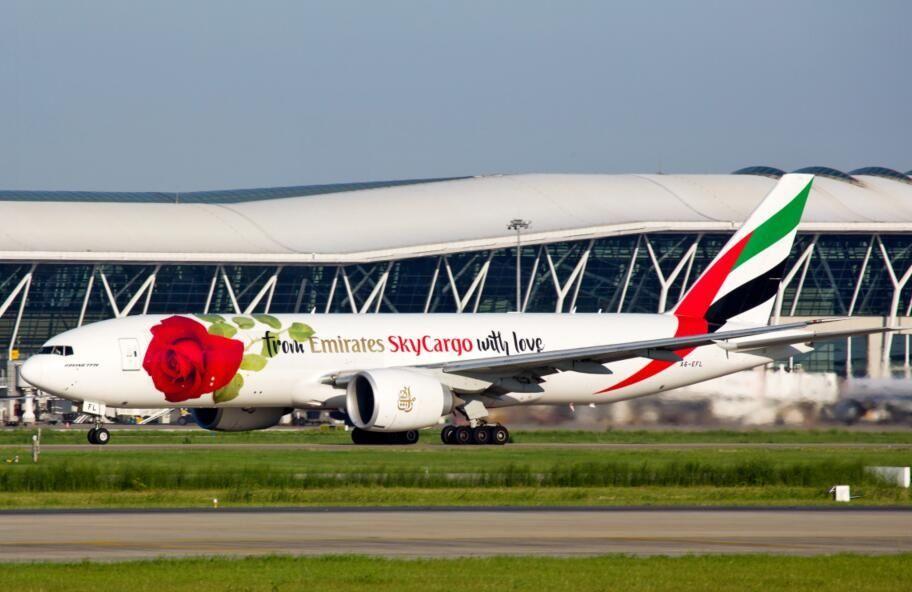 图:阿联酋航SkyCargo玫瑰涂装全货机现身浦东机场  摄影:西岳