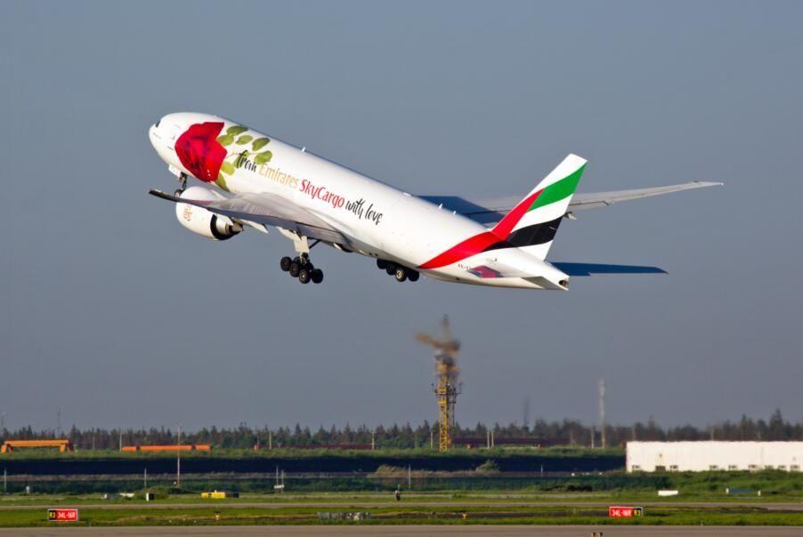 阿联酋航SkyCargo玫瑰涂装全货机现身浦东机场 摄影:AJT PROD