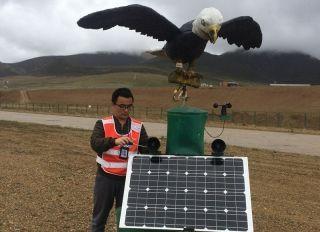 援藏故事:井强——在4300米高原铸写忠诚担当