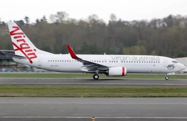 闻所未闻!一架客机在空中撞了一只兔子……