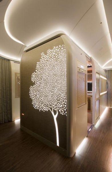 阿联酋航空全新波音777头等舱的阿联酋国树加夫树主题设计