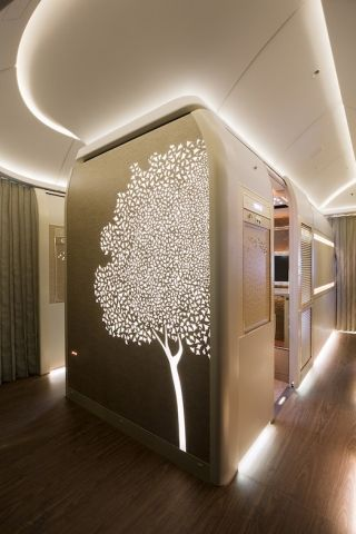 An artistic motif representing the Ghaf (prosopis cineraria) tree, is used as a design highlight throughout Emirates 777.